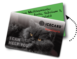 pic icecard foldable3